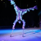 Chinese Circus On Ice